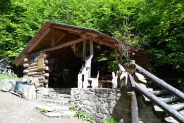 Lesní bar - Horní Lipová (45 km)